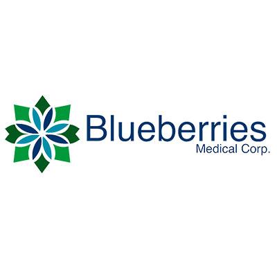 blueberries ingresa al mercado peruano